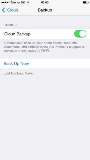 Set iCloud Backup to ON